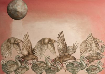 Dodo Birds and Hawks